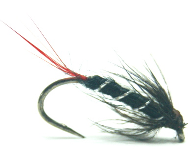 softhackles.com – Soft Hackle Wet Fly – Reids Assassin