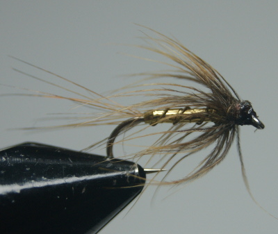 softhackles.com – Steamed Soft Hackle Wet Fly - Whickhams Fancy (before)