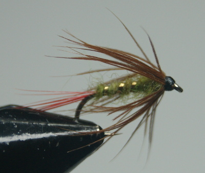 MyFlies - Steamed Hackle 26 after