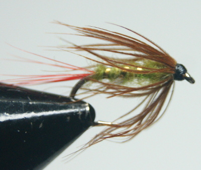 softhackles.com - Steamed Hackle Fly26 (before)