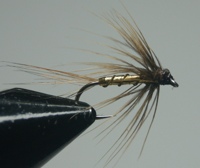 softhackles.com – Steamed Soft Hackle Wet Fly - Whickhams Fancy (after)