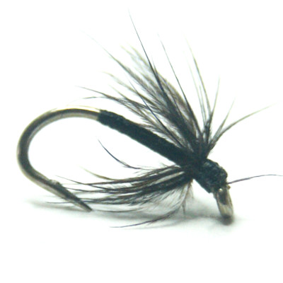 softhackles.com – Soft Hackle Wet Fly – Black Spider