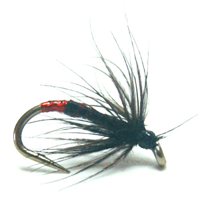softhackles.blog – Soft Hackle Wet Fly – Red Tag Spider