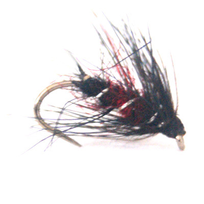 softhackles.blog - palmered hackle wet fly - Bibio