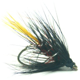 softhackles.blog - palmered hackle wet fly - Crested Bibio