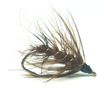 softhackles.blog - palmered hackle wet fly - Fiery Palmer