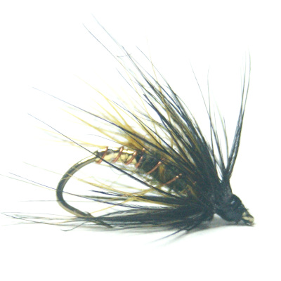 softhackles.blog - palmered hackle wet fly - Dark Olive Palmer