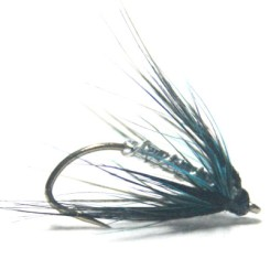 softhackles.blog - soft hackle wet fly - Silver and Blue