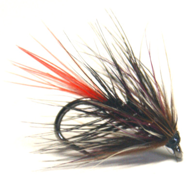 softhackles.blog - soft hackle wet fly - Storm Crow