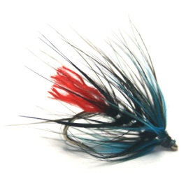softhackles.blog - soft hackle wet fly - Blue Zulu